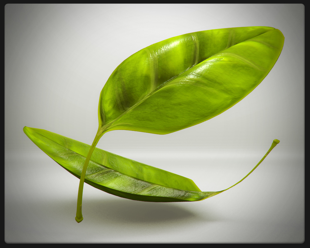 Leaf model for Blender | dots&shadows